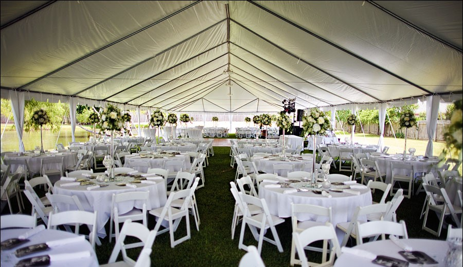 Resin White Chair With Pad Bend Party Rentals Chair
